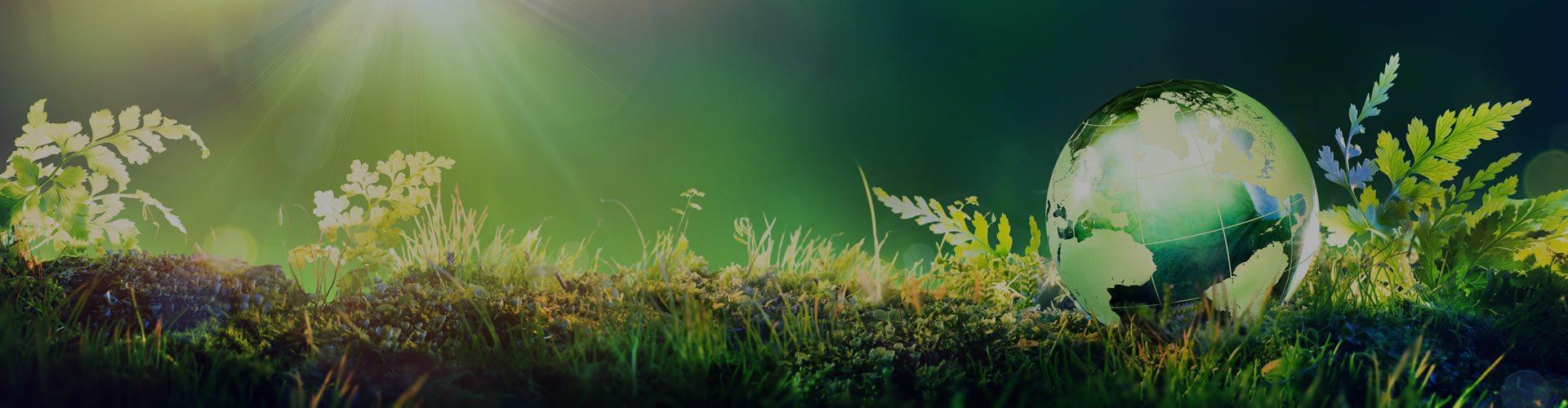 Consultoria, Gestão e Licenciamento Ambiental