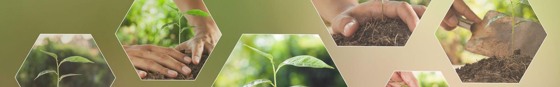 Auditorias e Pericias Ambientais em Vinhedo – SP